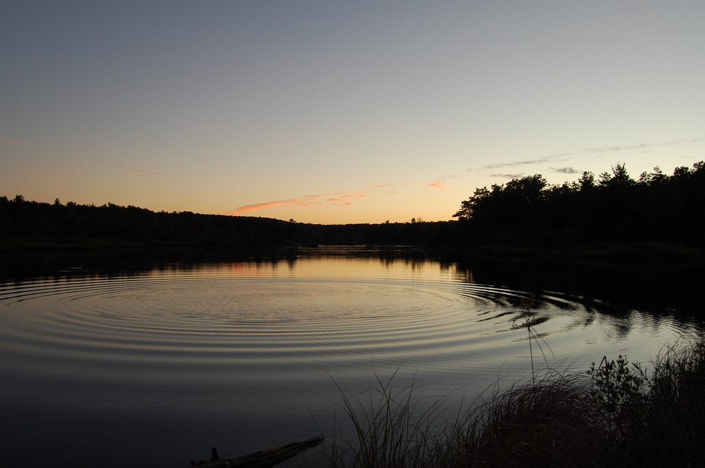 A quiet lake with a ripple spreading from the center